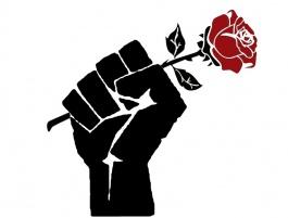 Zaynab: The Tree That Rose